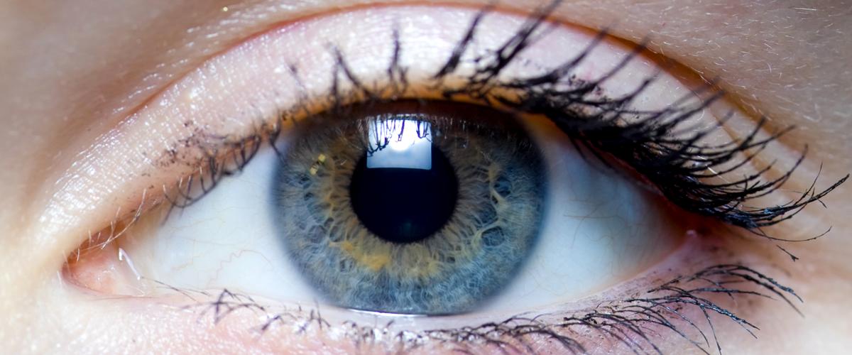 slide2_eyes
