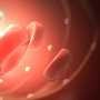 slide2_microcirkulaciq